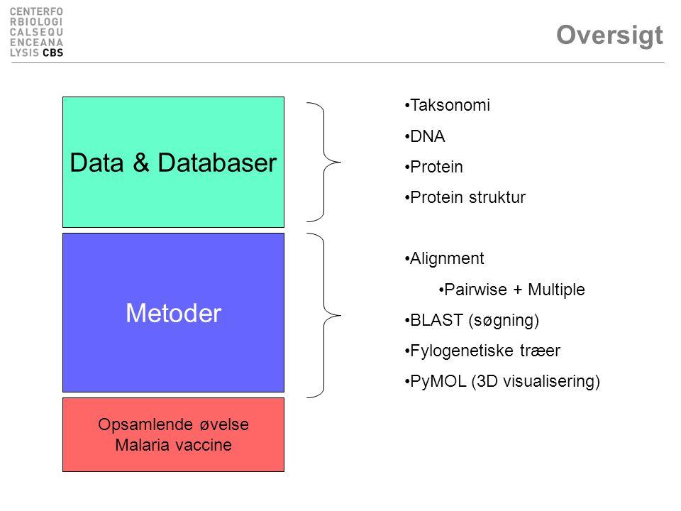 Oversigt Data & Databaser Metoder Taksonomi DNA Protein Protein struktur Alignment Pairwise + Multiple BLAST (søgning) Fylogenetiske træer PyMOL (3D visualisering) Opsamlende øvelse Malaria vaccine