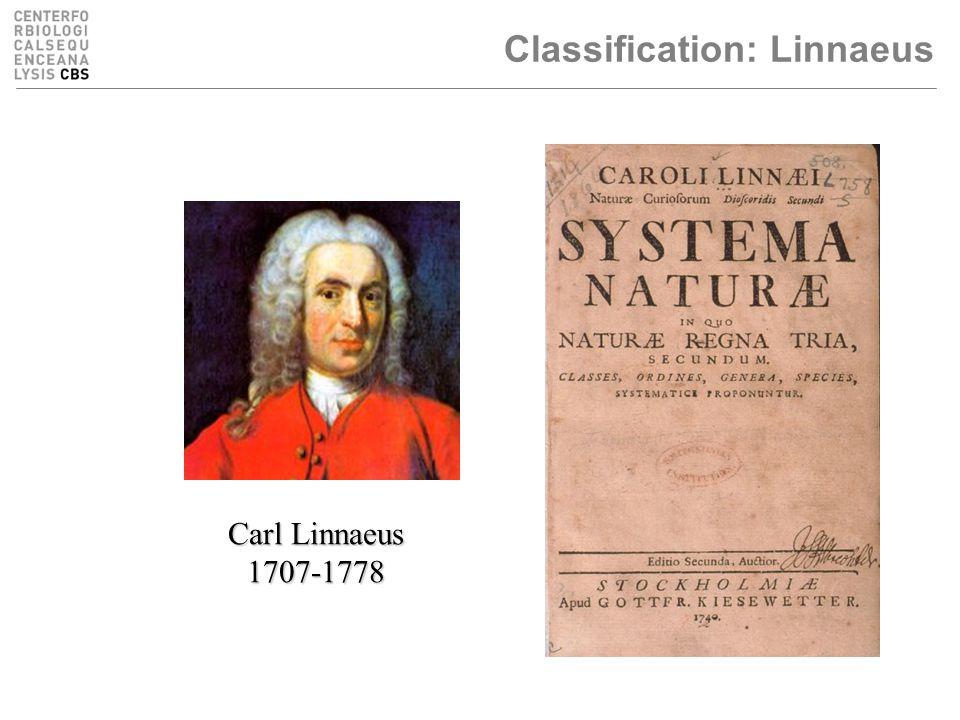 Classification: Linnaeus Carl Linnaeus 1707-1778