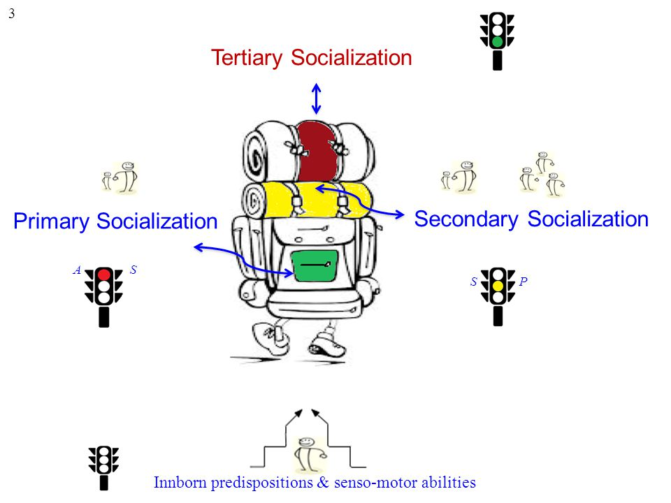 Tertiary Socialization Secondary Socialization Primary Socialization Innborn predispositions & senso-motor abilities 3 A S S P