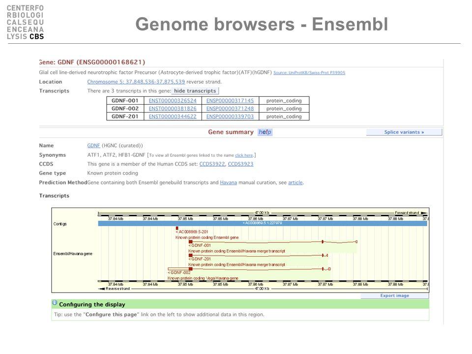 Genome browsers - Ensembl