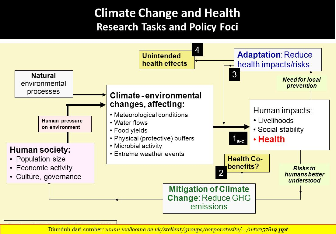 Climate Change and Health Research Tasks and Policy Foci Human society: Population size Economic activity Culture, governance Human pressure on environment Based on: McMichael et al., Brit med J, 2008 Adaptation: Reduce health impacts/risks Human impacts: Livelihoods Social stability Health Health Co- benefits.