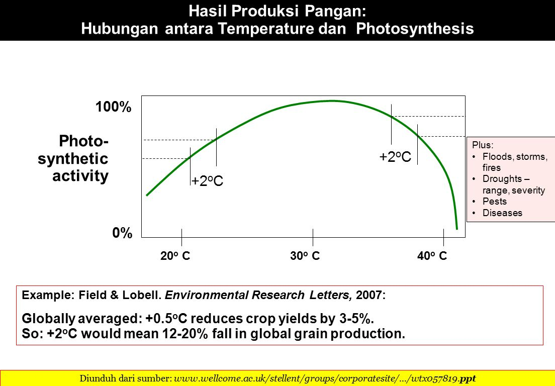 Photo- synthetic activity 20 o C30 o C40 o C Hasil Produksi Pangan: Hubungan antara Temperature dan Photosynthesis 0% 100% Example: Field & Lobell.