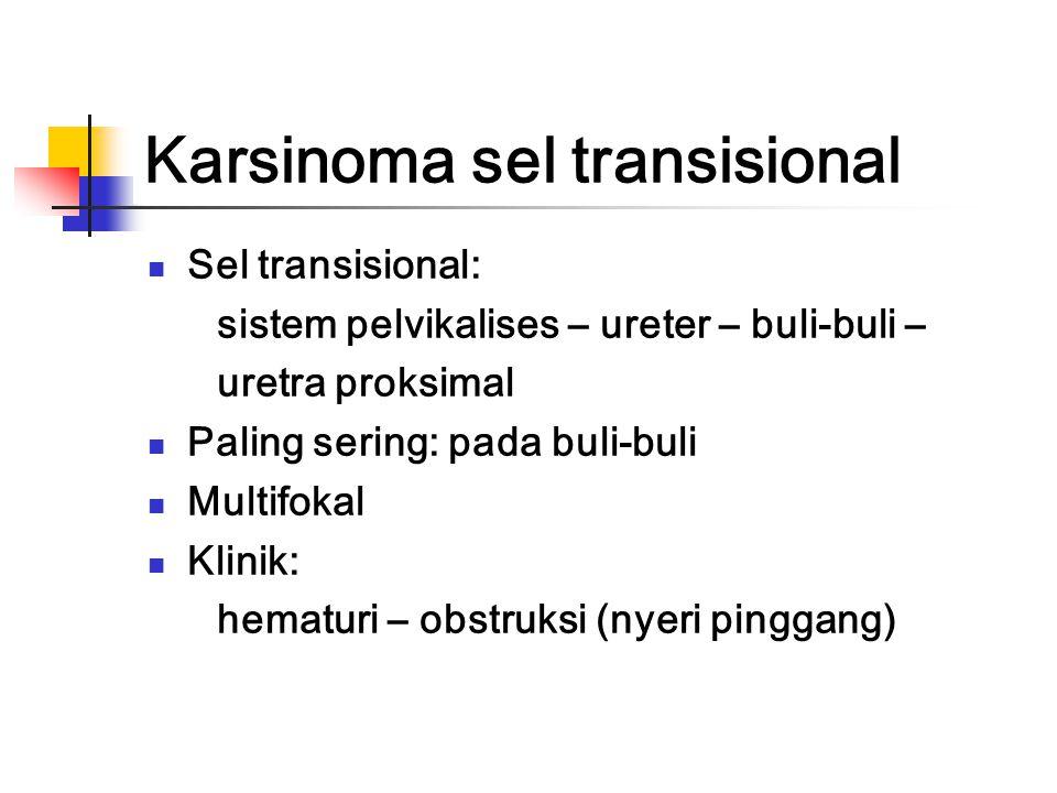 Terapi Nefrektomi dengan atau tanpa didahului dengan sitostatika Sitostatika (aktinomisin + vinkristin) Radiasi eksterna (radiosensitif)