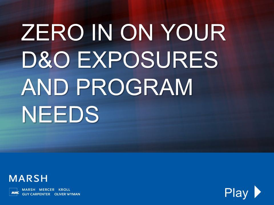 ZERO IN ON YOUR D&O EXPOSURES AND PROGRAM NEEDS Play