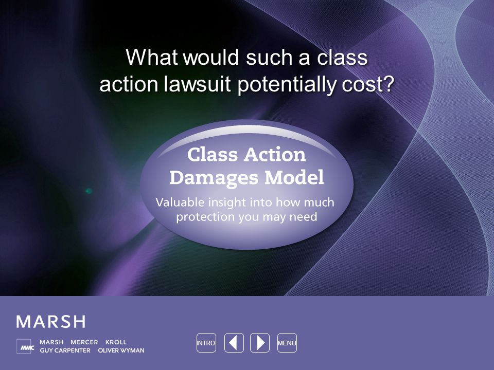 What would such a class action lawsuit potentially cost INTROMENU
