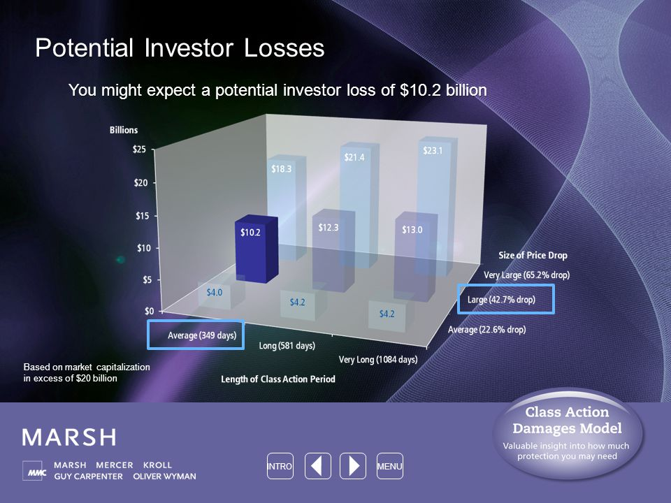Potential Investor Losses You might expect a potential investor loss of $10.2 billion INTROMENU Based on market capitalization in excess of $20 billion