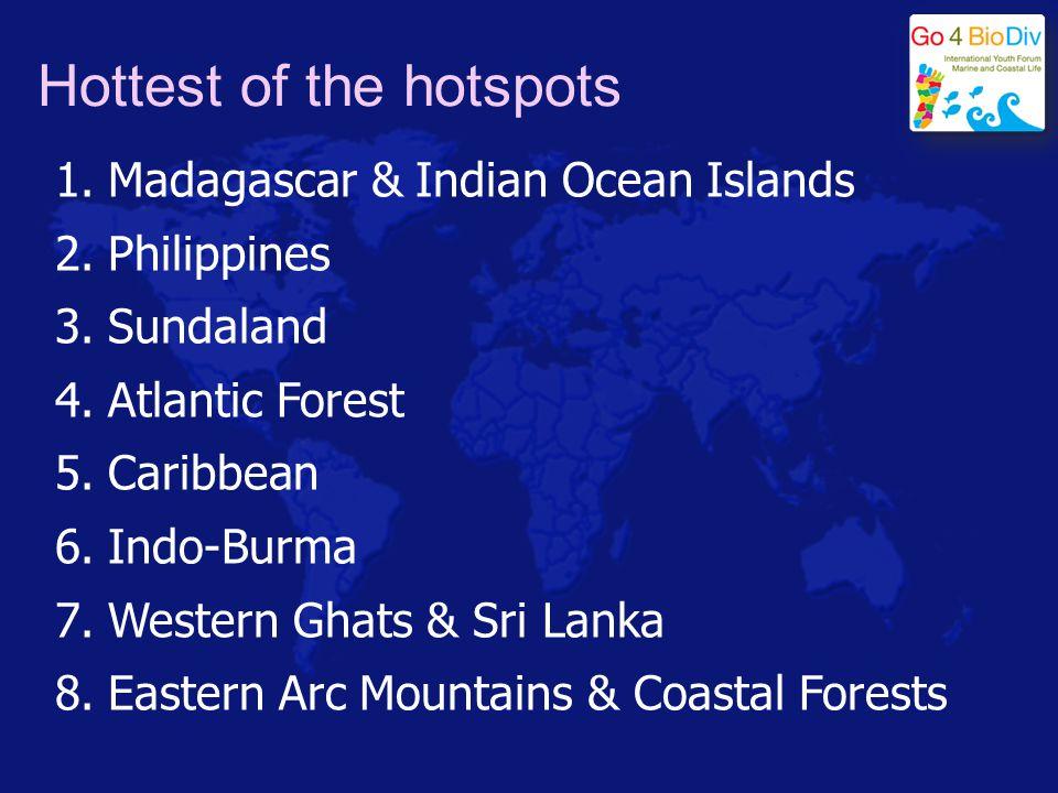 Hottest of the hotspots 1.Madagascar & Indian Ocean Islands 2.Philippines 3.Sundaland 4.Atlantic Forest 5.Caribbean 6.Indo-Burma 7.Western Ghats & Sri