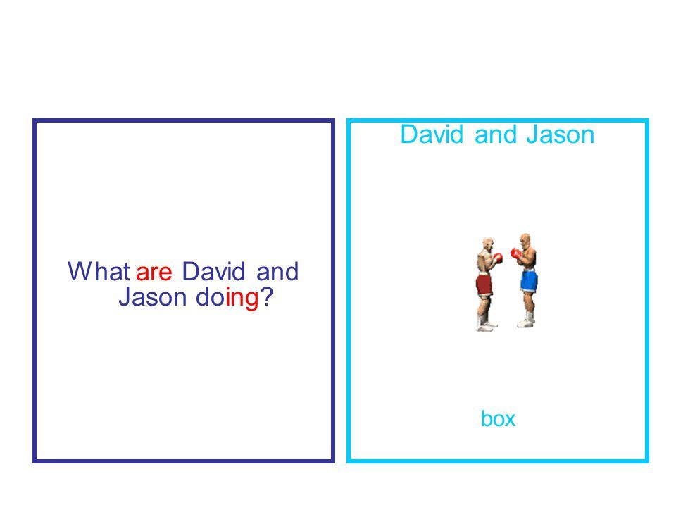 What are David and Jason doing David and Jason box