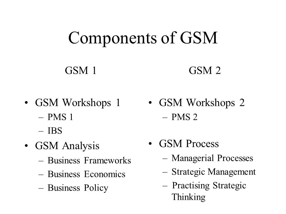 Components of GSM GSM 1 GSM Workshops 1 –PMS 1 –IBS GSM Analysis –Business Frameworks –Business Economics –Business Policy GSM 2 GSM Workshops 2 –PMS