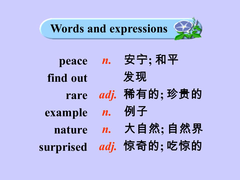 peace find out rare example nature surprised n. 安宁 ; 和平 发现 adj.
