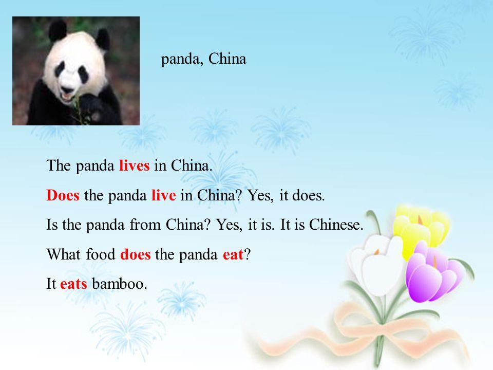 snake panda, China elephant lion giraffe tiger, China monkey camel, Asia polar bear Arctic kangaroo, Australia wolf Europe