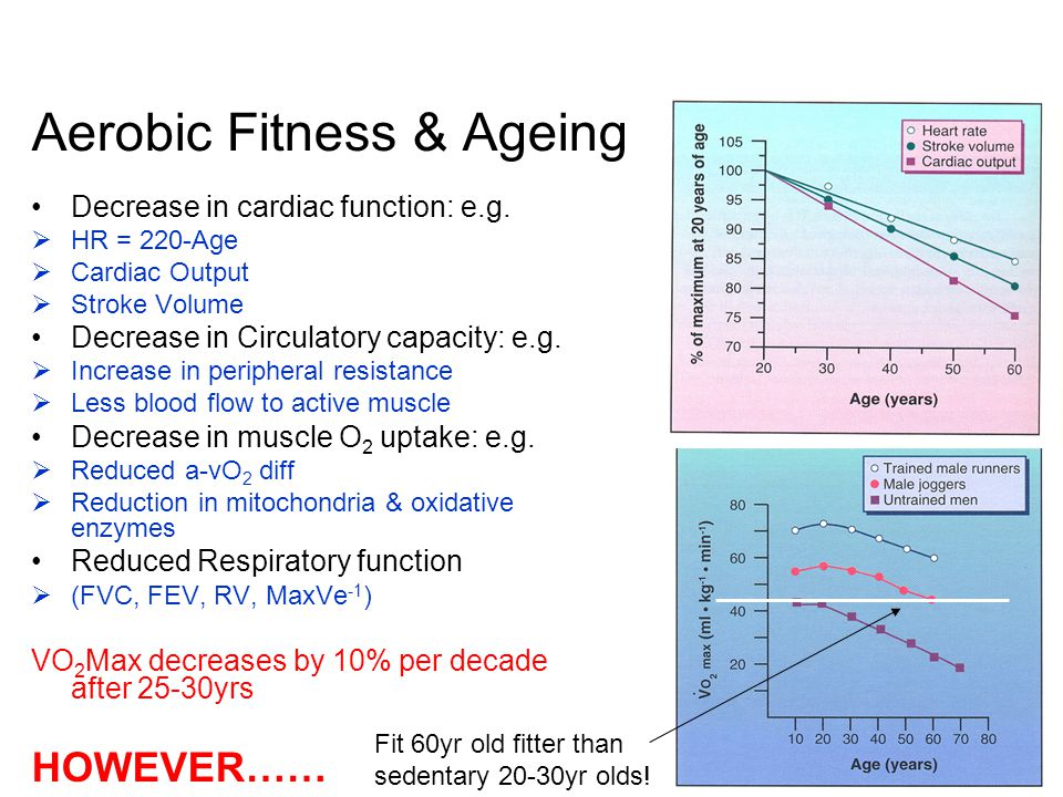 Aerobic Fitness & Ageing Decrease in cardiac function: e.g.