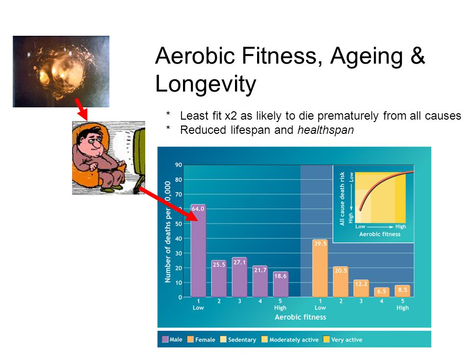 * Least fit x2 as likely to die prematurely from all causes * Reduced lifespan and healthspan Aerobic Fitness, Ageing & Longevity