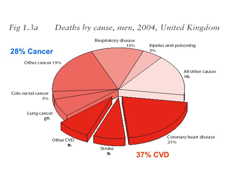 6 37% CVD 28% Cancer