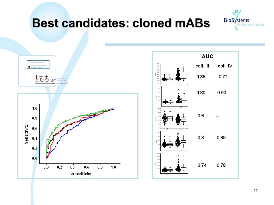 11 Best candidates: cloned mABs
