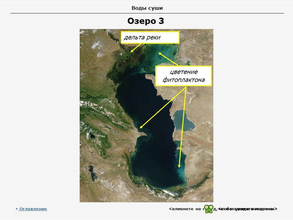 Воды суши Озеро 3 Оглавление Оглавление цветение фитоплактона дельта реки