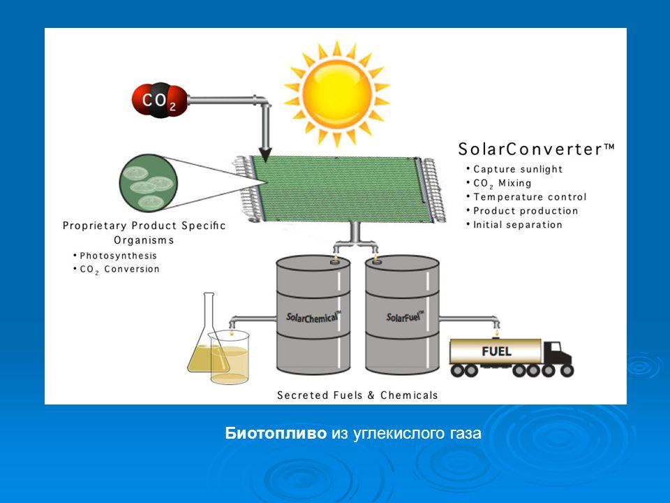 Биотопливо из углекислого газа