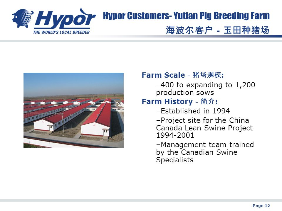 Page 12 Hypor Customers- Yutian Pig Breeding Farm 海波尔客户-玉田种猪场 Farm Scale -猪场规模 : –400 to expanding to 1,200 production sows Farm History -简介 : –Established in 1994 –Project site for the China Canada Lean Swine Project 1994-2001 –Management team trained by the Canadian Swine Specialists