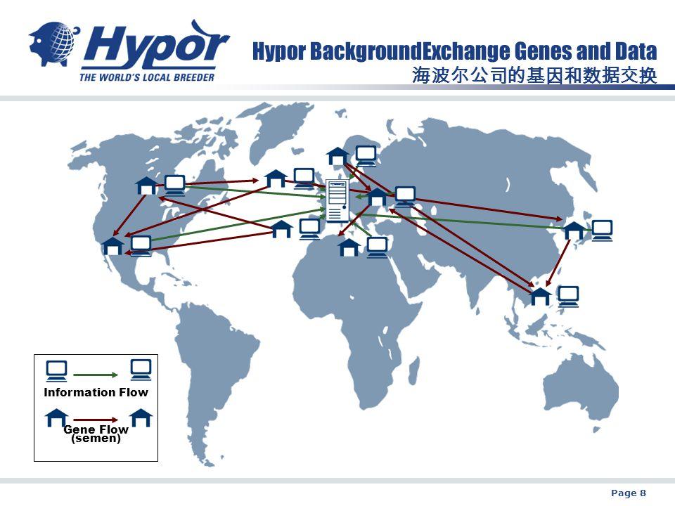 Page 8 Hypor BackgroundExchange Genes and Data 海波尔公司的基因和数据交换 Information Flow Gene Flow (semen)