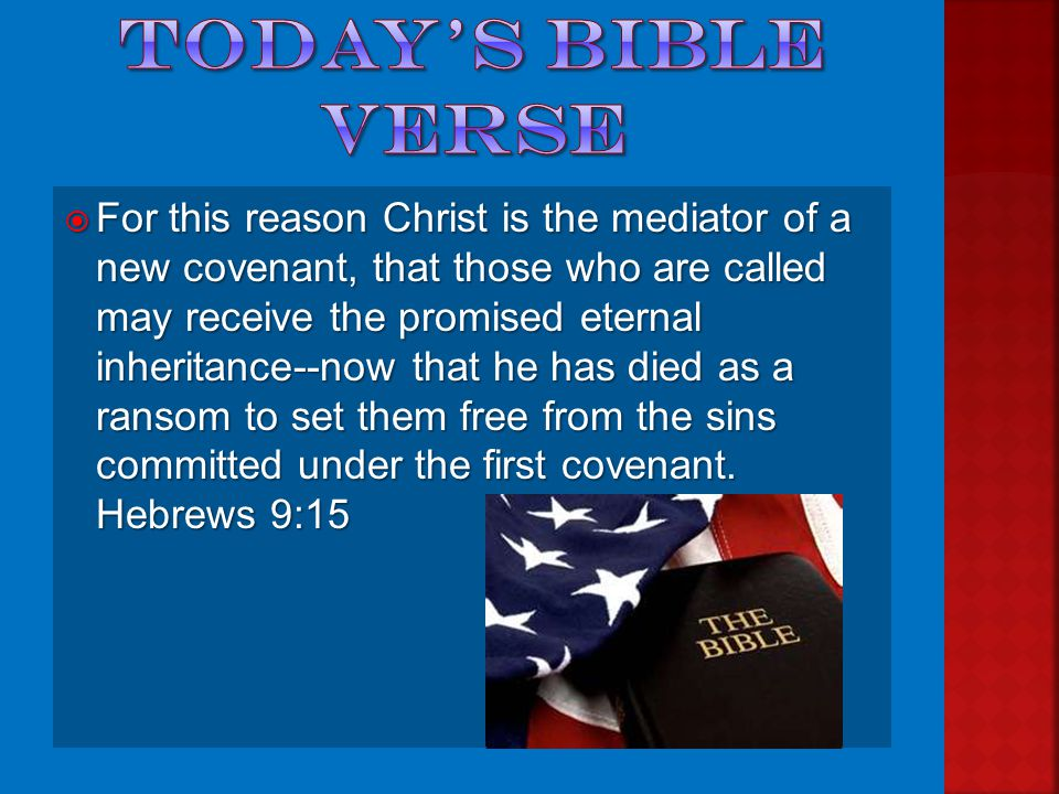  What book of the bible is our verse from today.  What is freedom.