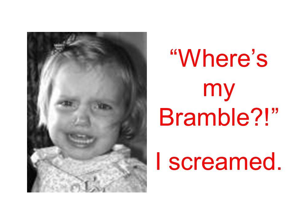 Where's my Bramble ! I screamed.