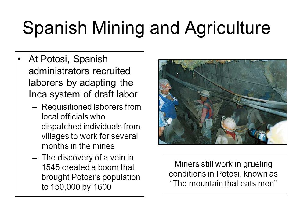 Spanish Mining and Agriculture At Potosi, Spanish administrators recruited laborers by adapting the Inca system of draft labor –Requisitioned laborers from local officials who dispatched individuals from villages to work for several months in the mines –The discovery of a vein in 1545 created a boom that brought Potosi's population to 150,000 by 1600 Miners still work in grueling conditions in Potosi, known as The mountain that eats men