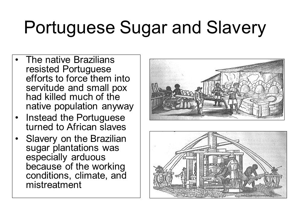 Portuguese Sugar and Slavery The native Brazilians resisted Portuguese efforts to force them into servitude and small pox had killed much of the native population anyway Instead the Portuguese turned to African slaves Slavery on the Brazilian sugar plantations was especially arduous because of the working conditions, climate, and mistreatment