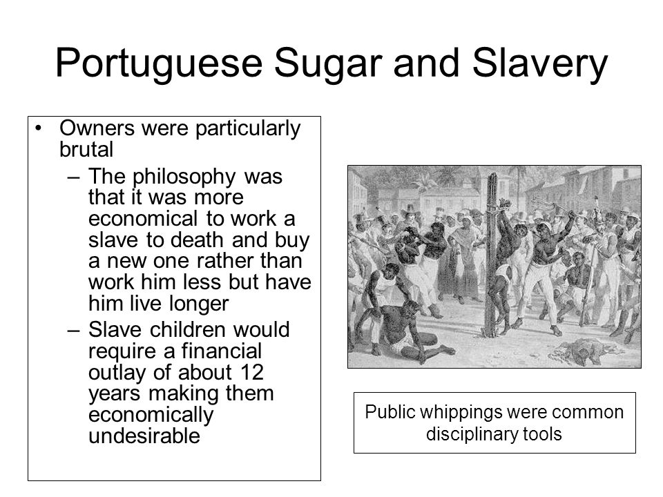 Portuguese Sugar and Slavery Owners were particularly brutal –The philosophy was that it was more economical to work a slave to death and buy a new one rather than work him less but have him live longer –Slave children would require a financial outlay of about 12 years making them economically undesirable Public whippings were common disciplinary tools