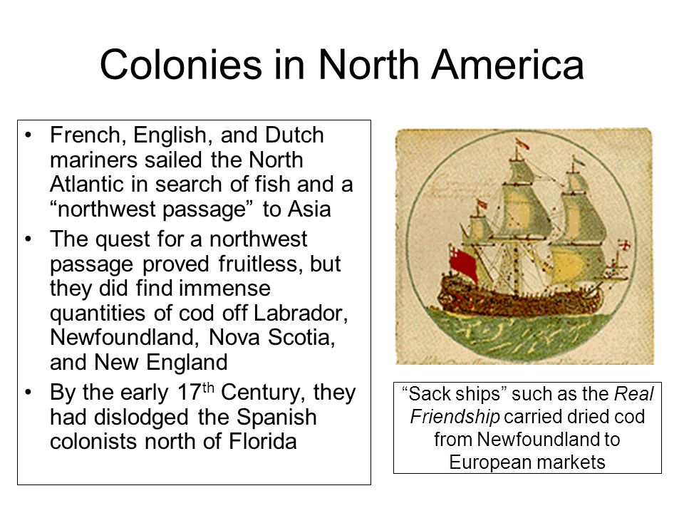 Colonies in North America French, English, and Dutch mariners sailed the North Atlantic in search of fish and a northwest passage to Asia The quest for a northwest passage proved fruitless, but they did find immense quantities of cod off Labrador, Newfoundland, Nova Scotia, and New England By the early 17 th Century, they had dislodged the Spanish colonists north of Florida Sack ships such as the Real Friendship carried dried cod from Newfoundland to European markets
