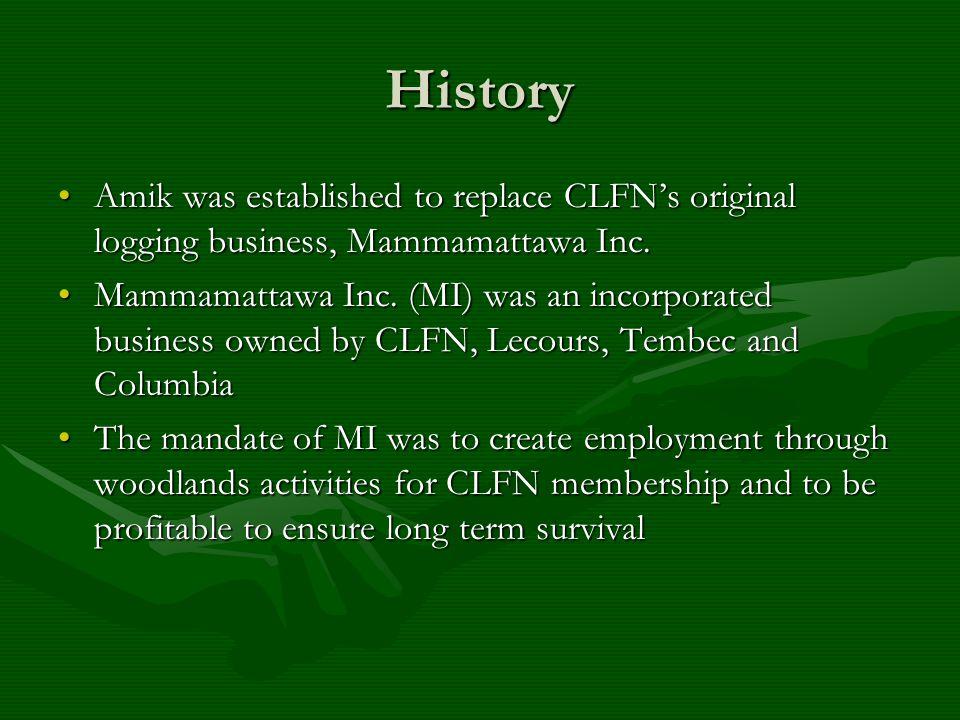 History Amik was established to replace CLFN's original logging business, Mammamattawa Inc.Amik was established to replace CLFN's original logging business, Mammamattawa Inc.