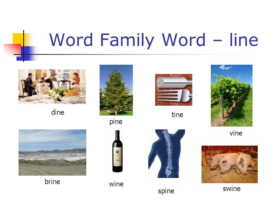 Word Family Word – line dine pine tine vine brine wine spine swine