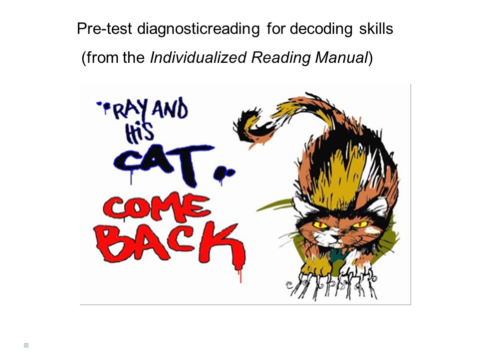 Ray and his Cat Come Back Pre-test diagnosticreading for decoding skills (from the Individualized Reading Manual)