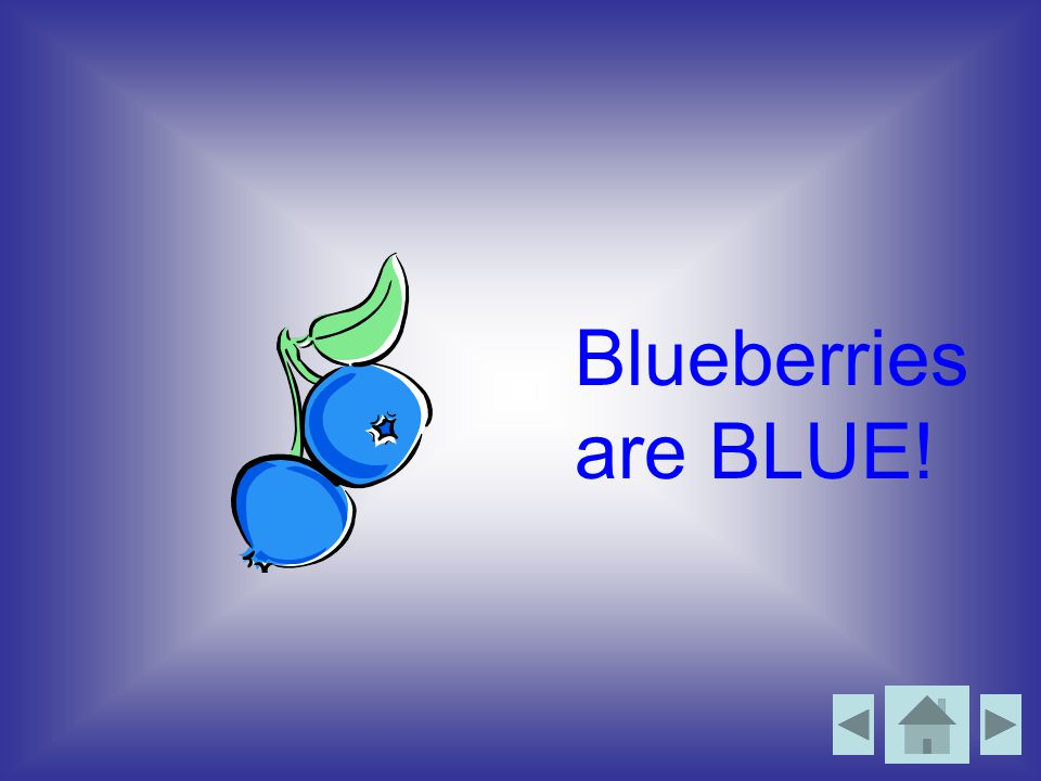 Blueberries are BLUE!