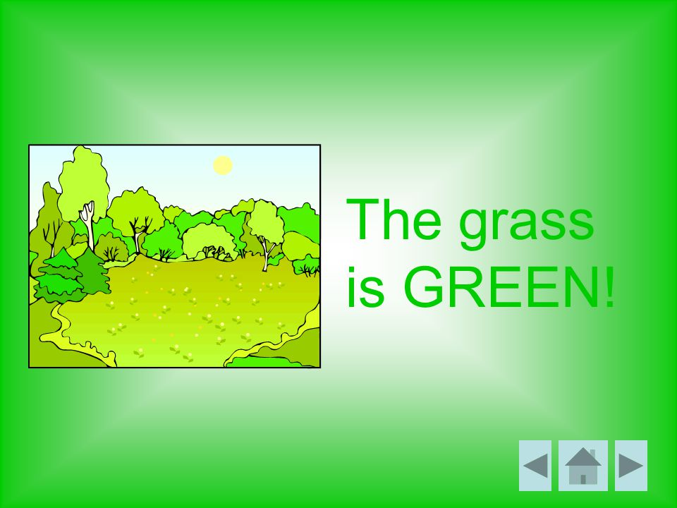 The grass is GREEN!
