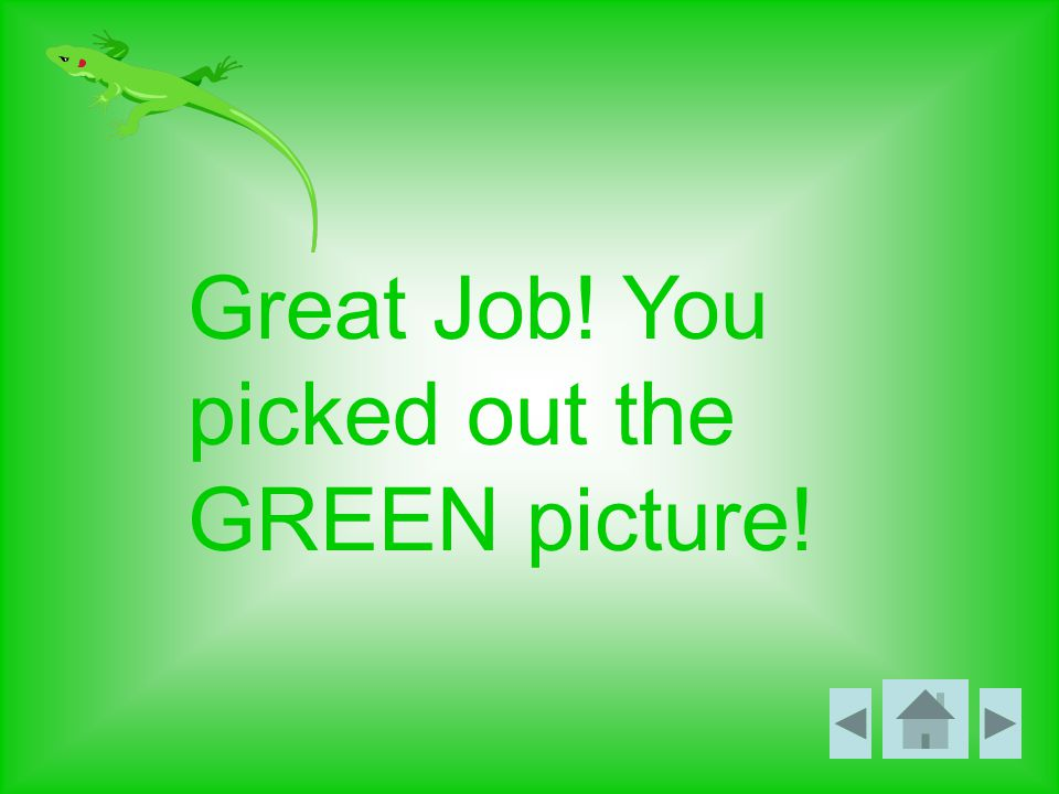 Great Job! You picked out the GREEN picture!