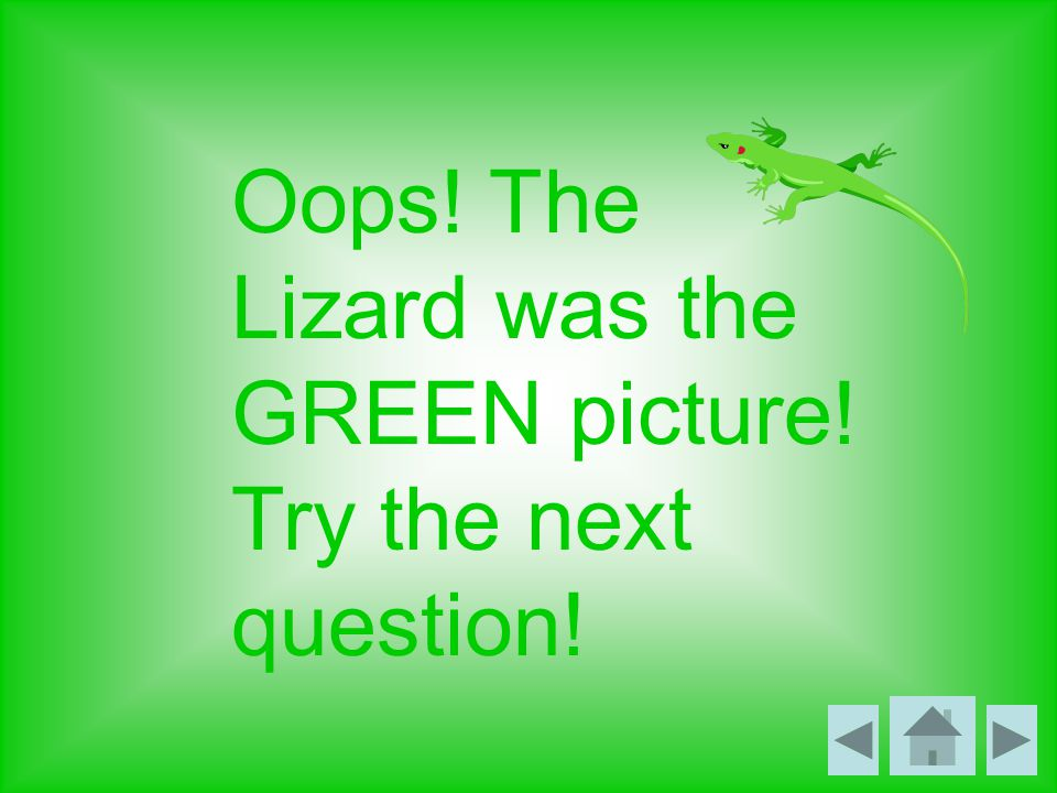 Oops! The Lizard was the GREEN picture! Try the next question!