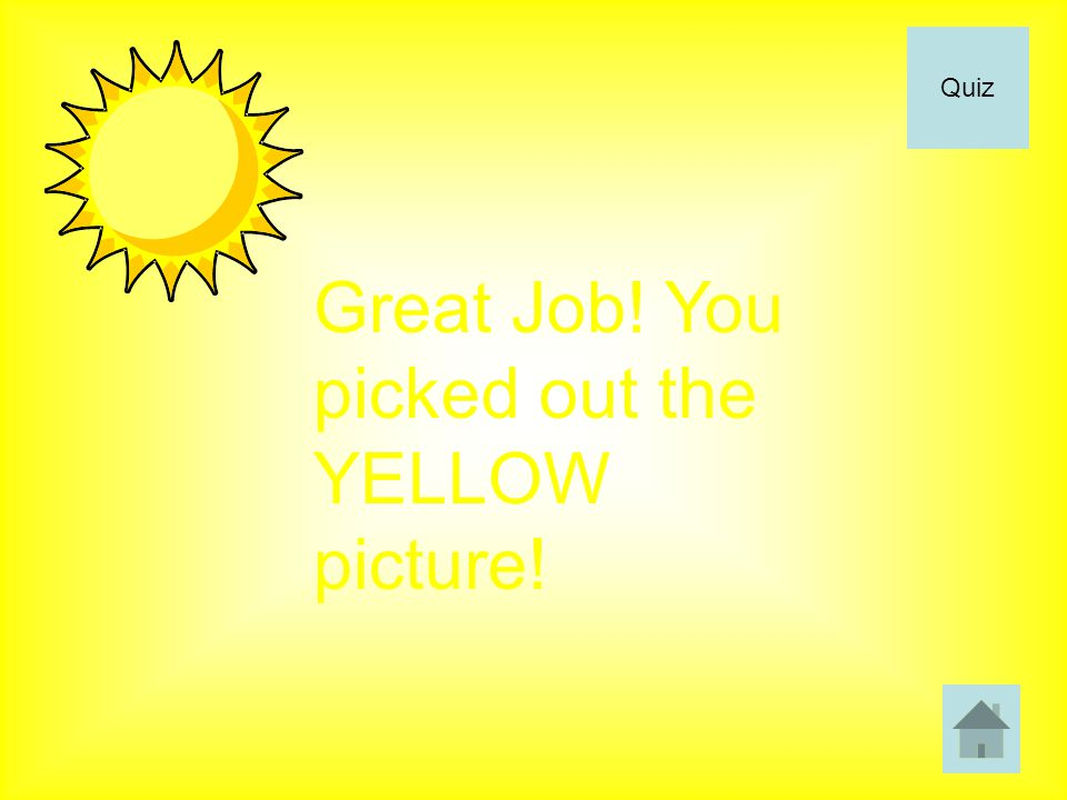 Great Job! You picked out the YELLOW picture! Quiz