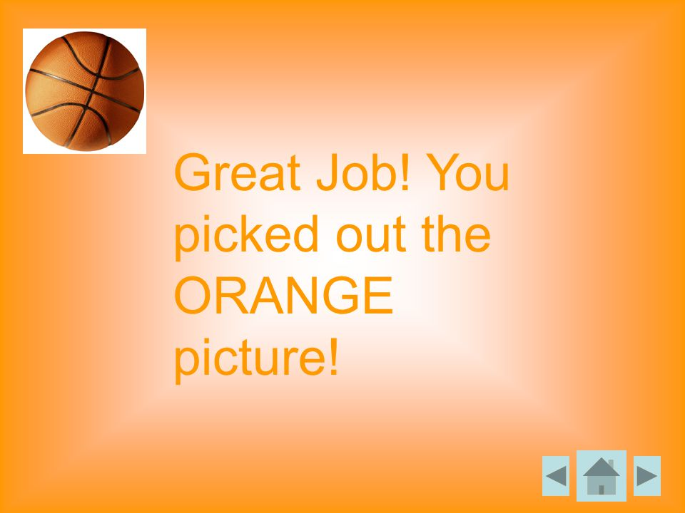 Great Job! You picked out the ORANGE picture!