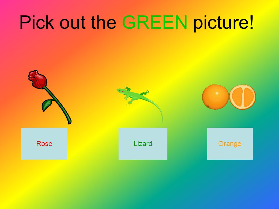 Pick out the GREEN picture! LizardRoseOrange