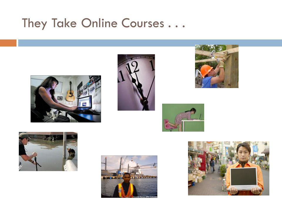 They Take Online Courses...