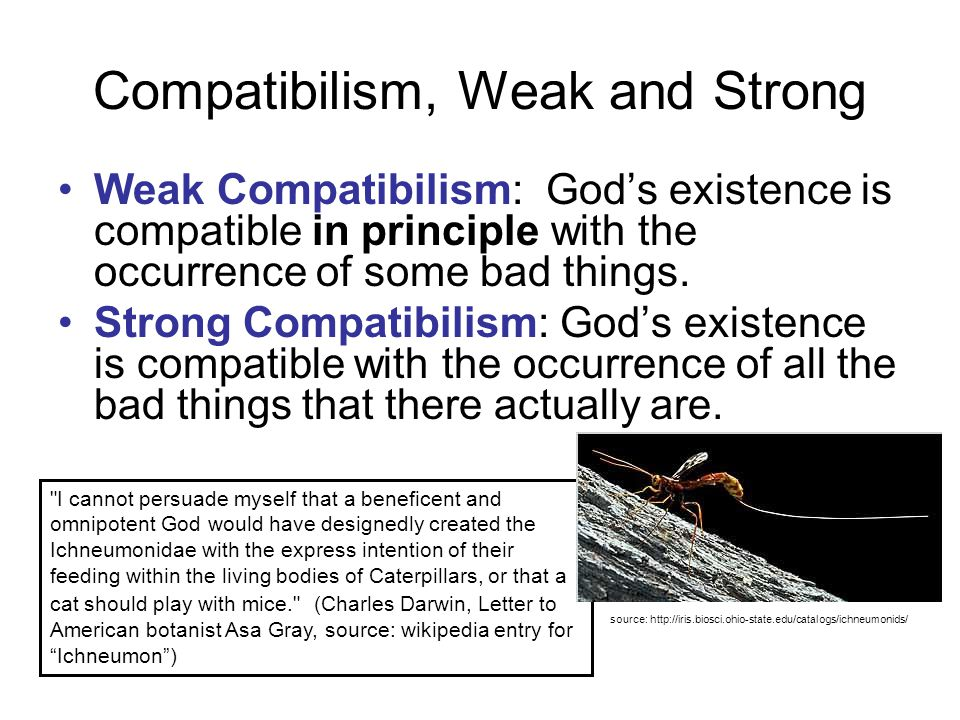 Compatibilism, Weak and Strong Weak Compatibilism: God's existence is compatible in principle with the occurrence of some bad things.