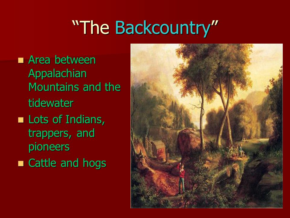 The Backcountry Area between Appalachian Mountains and the Area between Appalachian Mountains and thetidewater Lots of Indians, trappers, and pioneers Lots of Indians, trappers, and pioneers Cattle and hogs Cattle and hogs