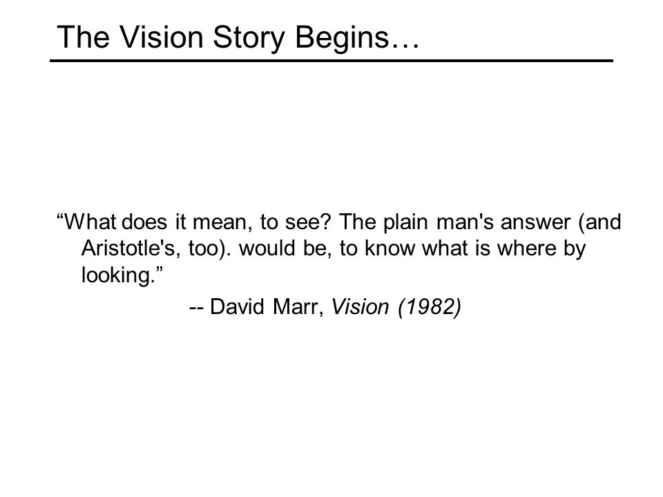 "The Vision Story Begins… ""What does it mean, to see? The plain man's answer (and Aristotle's, too). would be, to know what is where by looking."" -- Da"