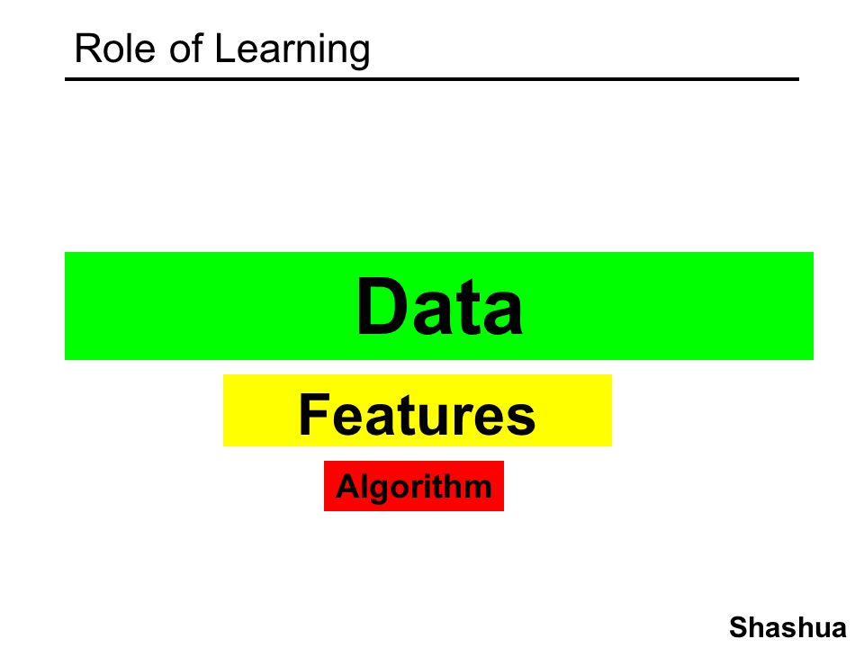 Role of Learning Data Features Algorithm Shashua