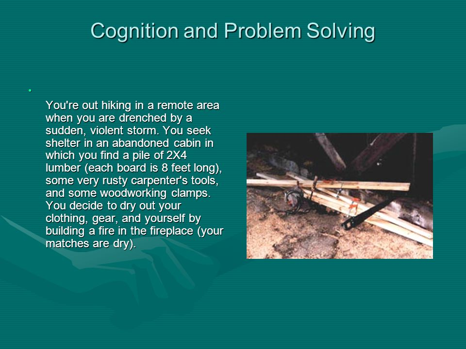 Cognition and Problem Solving You re out hiking in a remote area when you are drenched by a sudden, violent storm.