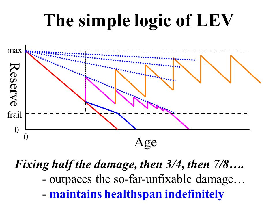 Age Reserve 0 0 max frail The simple logic of LEV Fixing half the damage, then 3/4, then 7/8….