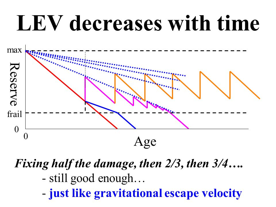 Age Reserve 0 0 max frail LEV decreases with time Fixing half the damage, then 2/3, then 3/4….