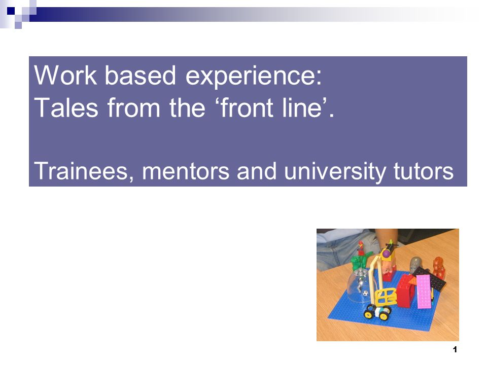 1 Work based experience: Tales from the 'front line'. Trainees, mentors and university tutors