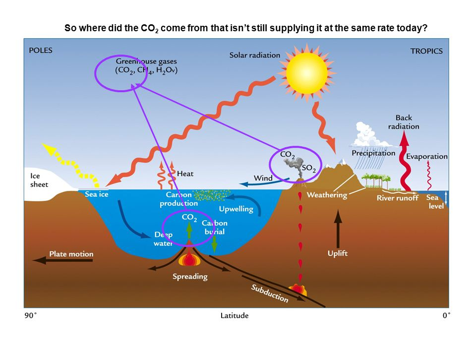 So where did the CO 2 come from that isn't still supplying it at the same rate today