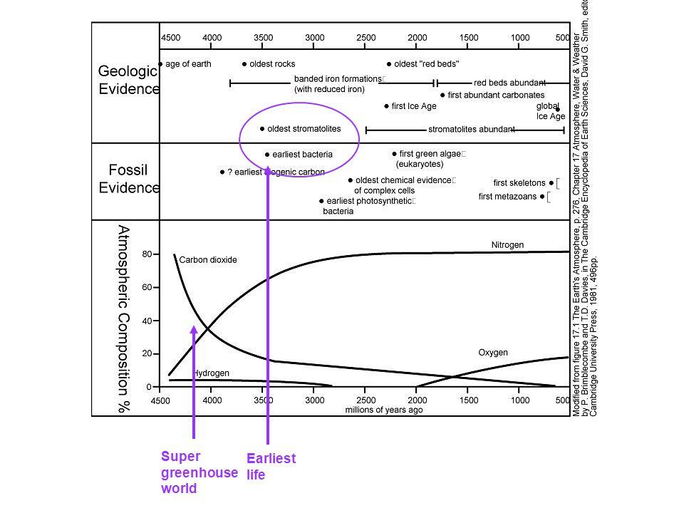 Super greenhouse world Earliest life